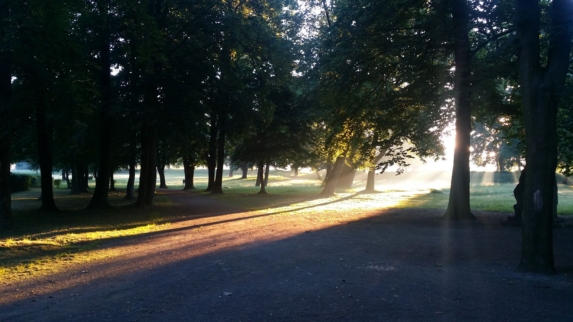 Banner Park 1 Sonnenaufgang